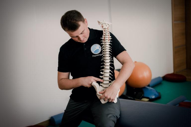 Model kręgosłupa obrazuje w tym momencie struktury anatomiczne, które muszą zostać objęte działaniem, które opisuje proces - rehabilitacja kręgosłupa katowice. Wpływanie to powinno uwzględnić badanie krążków międzykręgowych (dysków) oraz stawów międzywyrostkowych.