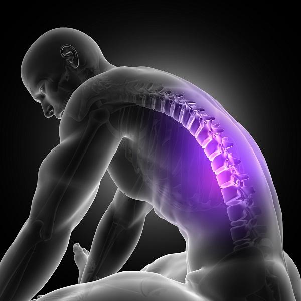 Na rycinie przedstawiony jest człowiek cierpiący z powodu bólu odcinka piersiowego kręgosłupa. Jego dolno środkowej części. Katowice fizjoterapia zajmuje się diagnostyką tego typu dolegliwości.