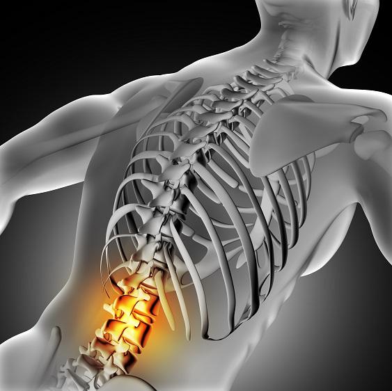 Dolegliwości przedstawione na tym szarym tle obejmują obszar ciała, który bardzo często jest powiązany z dolegliwościami obejmującymi obszar pracy specjalisty takiego jak fizjoterapeuta uroginekologiczny katowice.